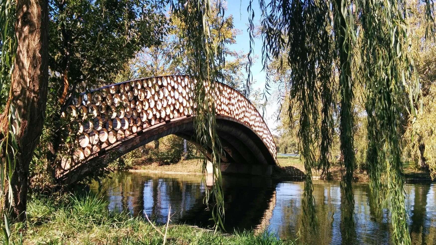 Financial Advisor Bridge