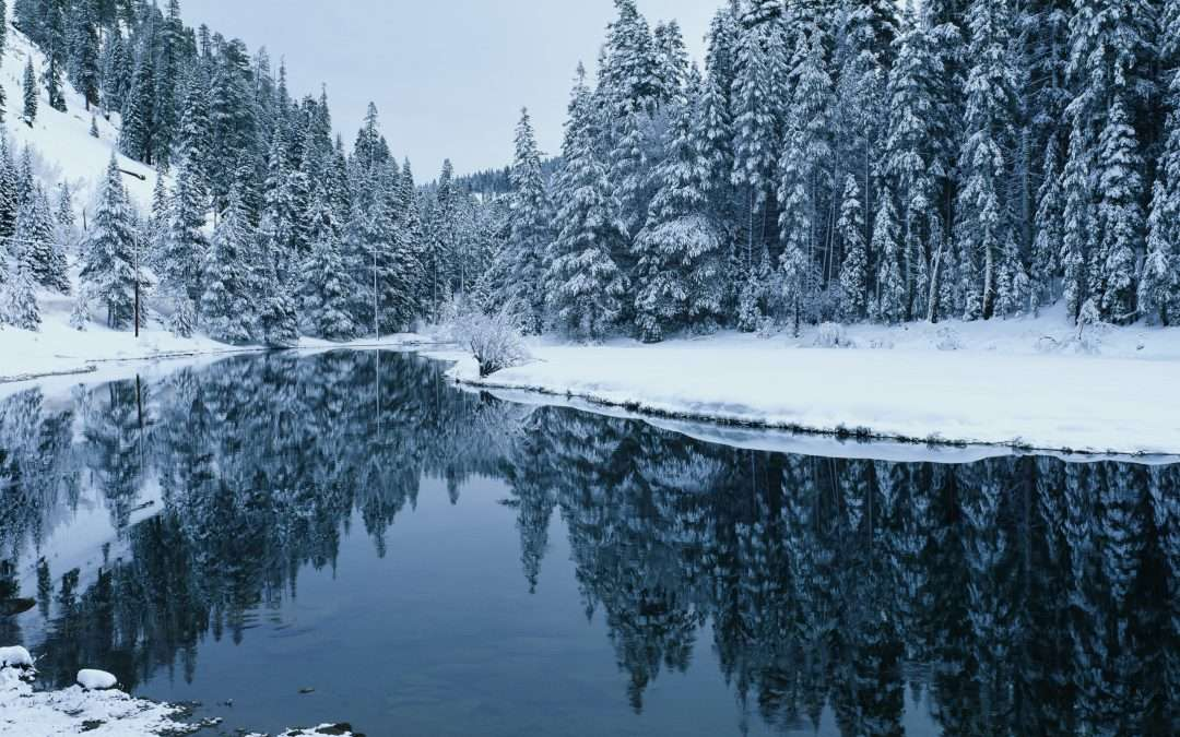Wintertime Reflections (Phase 2 Planning)